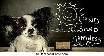 rolig, sommar, hund, semester