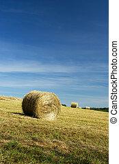 Roll hay in landscape
