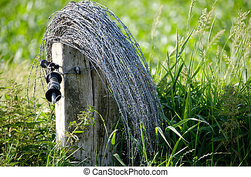 roll of barbed wired on a wooden post in an open field with high green grass
