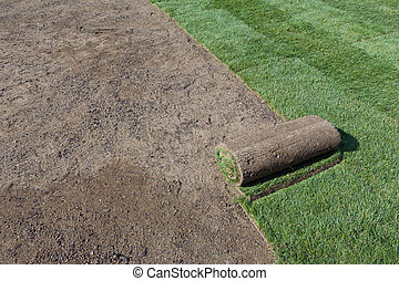 rolled sod - installing new sod
