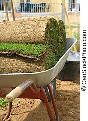 Rolled sod - Stack od rolled grass sod for lawns and...