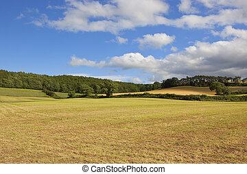 rolling agricultural landscape