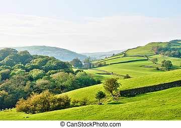 Rolling countryside around a farm - Rolling English...