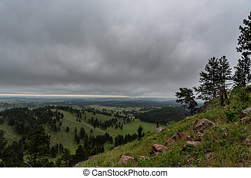 Rolling Fields in Black Hills Wilderness from Rankin Ridge...