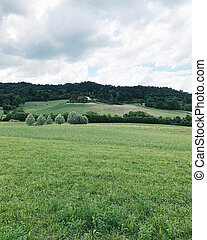 Rolling green hills in Piedmont, Northern Italy. Summer ...