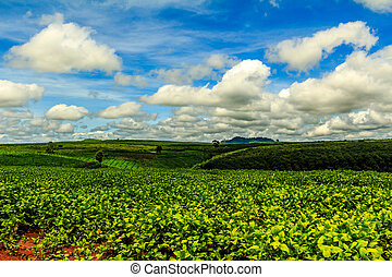 Rolling green hills under...