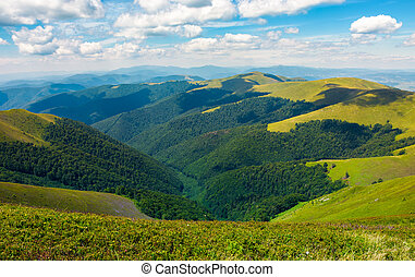 rolling hill of Carpathian mountains. beautiful summer...