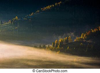rolling hills in autumn morning fog. beautiful rural scenery