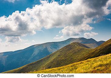 rolling hills of Borzhava mountain ridge in summer....
