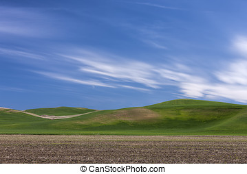 Rolling hills on the Palouse.