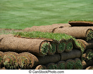 View of stacked rolls of sod on a turf farm.