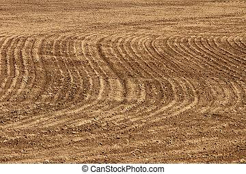 rolnictwo, tło, -, plowed pole