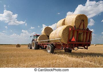 rolnictwo, -, traktor