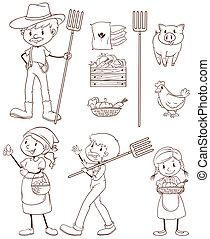 rolnik, rys, prosty