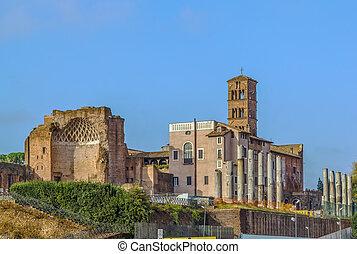 roma, venus, rom, tempel