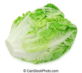 romaine, frais, salade, salade verte