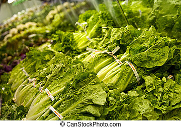 a display of romaine lettuce at a store