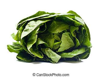 romaine, salada