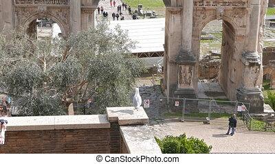 Roman Forum, Septimius Severus Arch. Rome, Italy