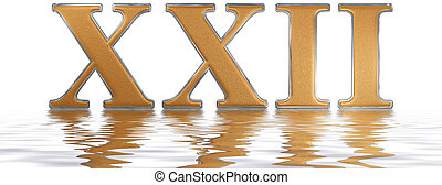 Roman numeral XXII, duo et viginti, 22, twenty two, reflected on the water surface, isolated on white, 3d render