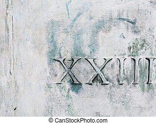 Roman numerals twenty three on white and green