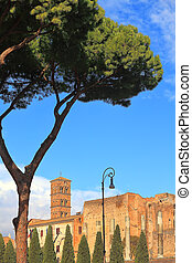 romana, italy., ローマ, santa, francesca, church.