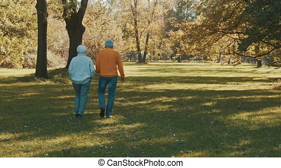 Romance and love at old age. Old couple, pensioners walking in the park on autumn day