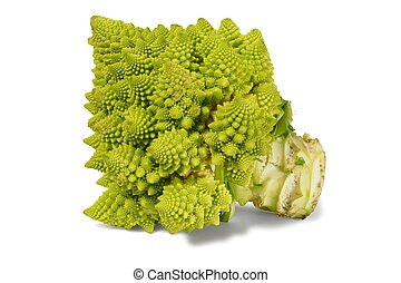Romanesco broccoli on white