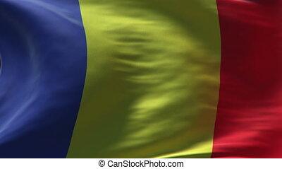romania flag waving loop
