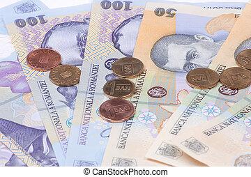 Romanian money close view