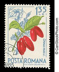 Romanian post stamp