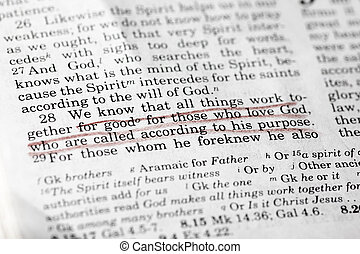 Romans 8:28 - a popular verse in the New Testament