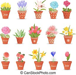 romantic collection of cute flowerpots with flowers for your...