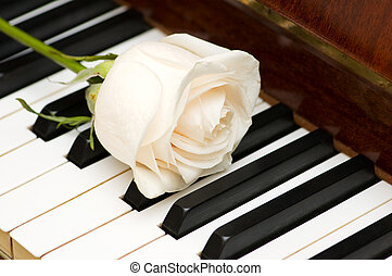 Red rose piano keys Images and Stock Photos. 341 Red rose ...