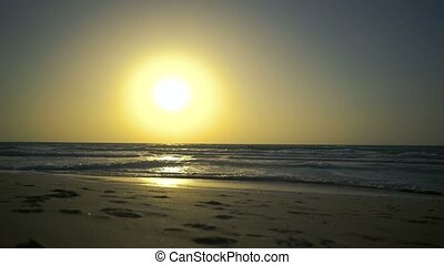 Romantic couple is falling in love on shore of the sea at sunset. Man with woman is holding hands and walking along the golden sandy beach. Two hipster in love, kiss each other, dreams under the sun.
