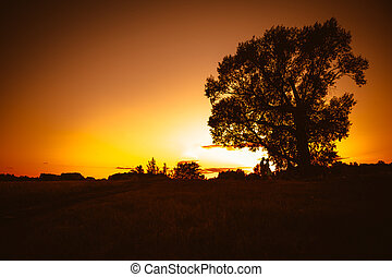 Romantic couple standing and kissing on background summer meadow sunset