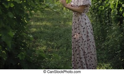 Romantic girl running in vineyards - Romantic girl in a long...