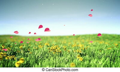 Romantic hearts - Hearts flies over summer grass field