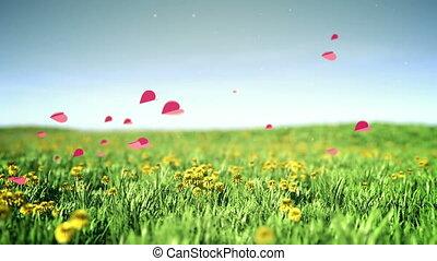 Romantic hearts - Hearts flies over summer grass field