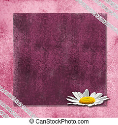 romantic pink background with a daisy