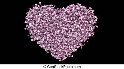 Romantic Pink Rose Sakura Flower Petals In Heart Shape Alpha Matte Loop 4k