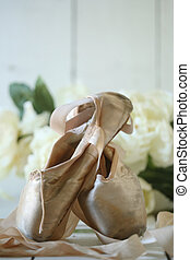 Posed Pointe Shoes in Natural Light