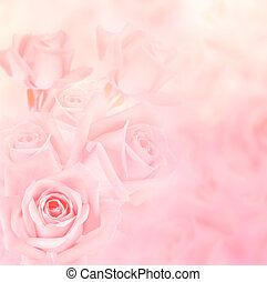 romantic roses for background