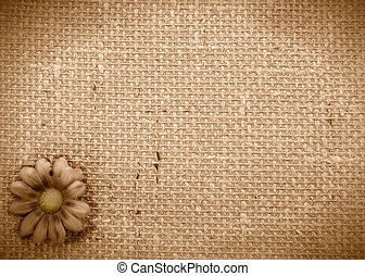 romantic rustic daisy background - sepia background burlap...