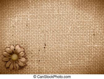 romantic rustic daisy background - sepia background burlap...