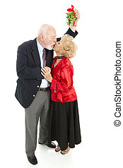 Romantic Seniors Under Mistletoe