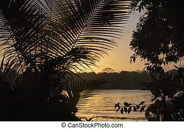 romantic sunset at the beach in Tortugenero in Costa Rica