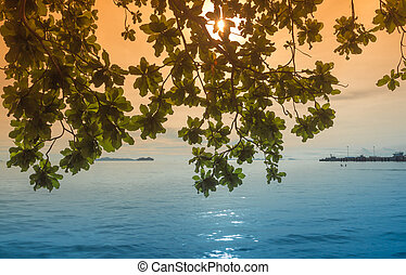 Romantic sunset at tropical with green leaf foreground beach, Tha