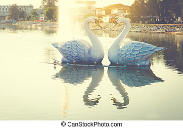 romantic sunset lake with swan on water