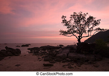 Romantic Sunset - The sky glows in pink after sunset at the...
